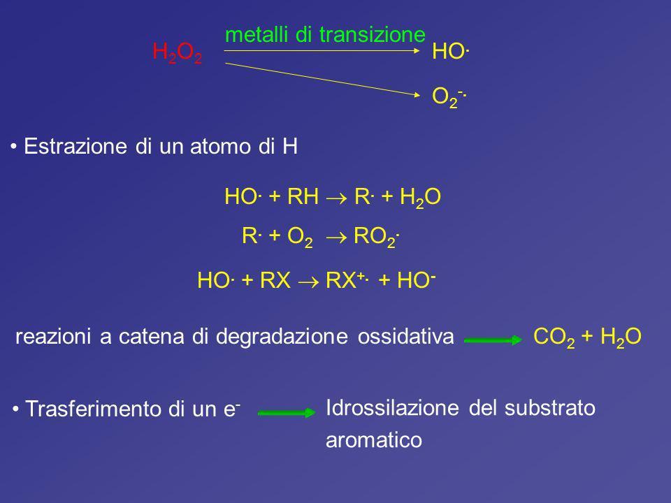 metalli di transizione H2O2 HO.