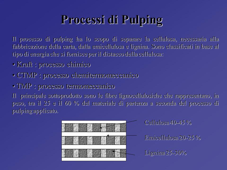 Processi di Pulping Kraft : processo chimico