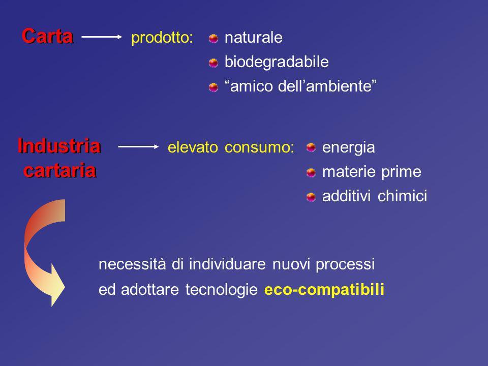 Carta Industria cartaria prodotto: naturale biodegradabile