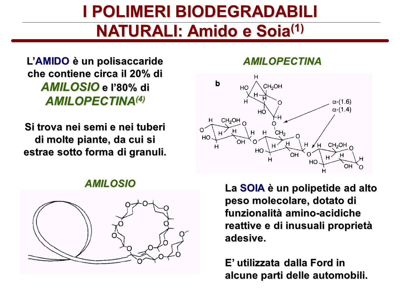 I POLIMERI BIODEGRADABILI NATURALI: Amido e Soia(1)