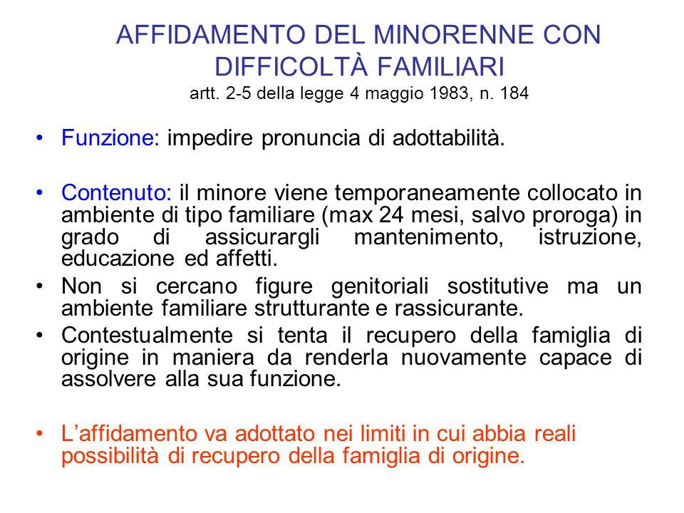AFFIDAMENTO DEL MINORENNE CON DIFFICOLTÀ FAMILIARI artt