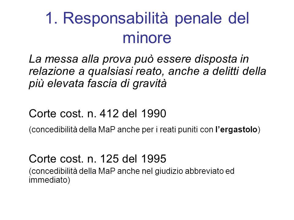 1. Responsabilità penale del minore