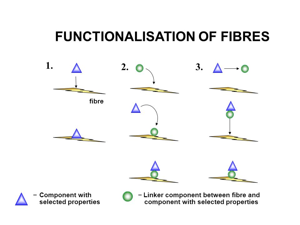 FUNCTIONALISATION OF FIBRES