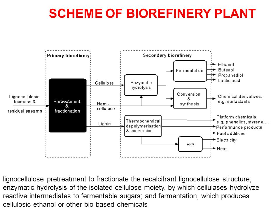 SCHEME OF BIOREFINERY PLANT