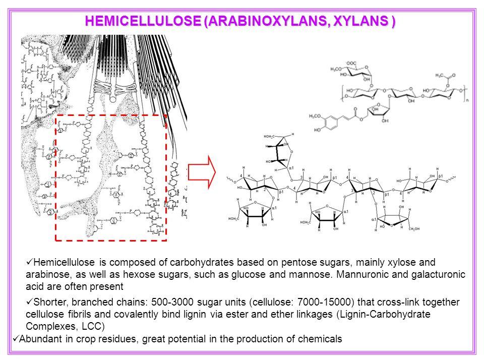 HEMICELLULOSE (ARABINOXYLANS, XYLANS )