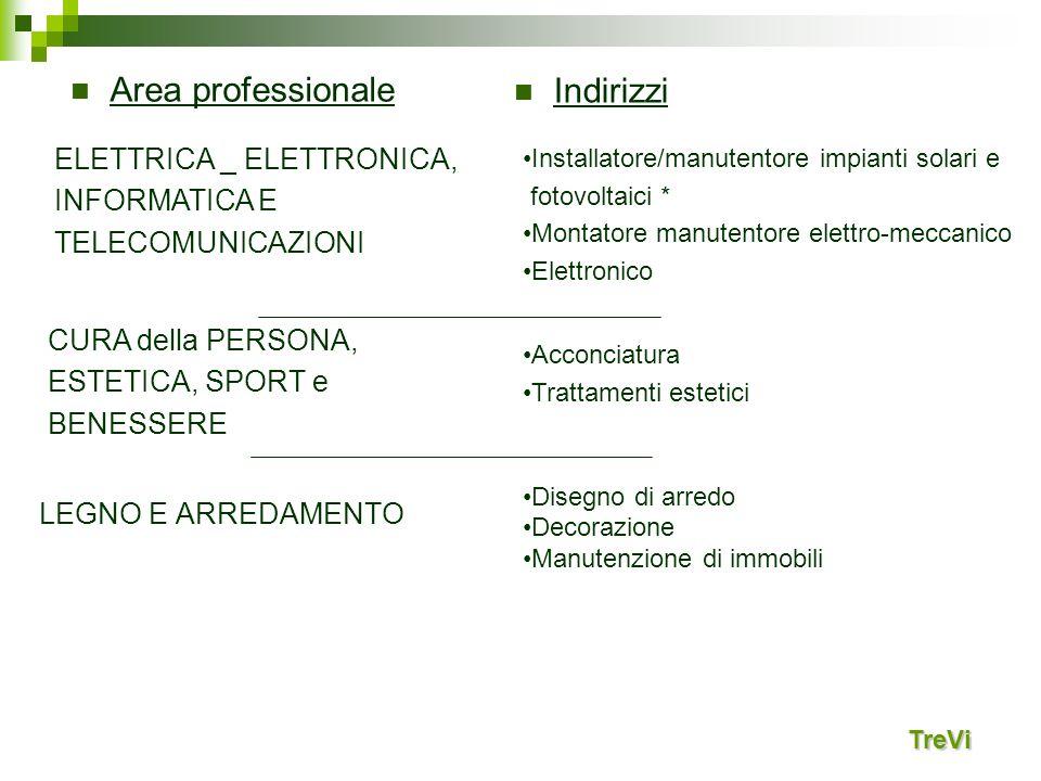 Area professionale Indirizzi ELETTRICA _ ELETTRONICA, INFORMATICA E