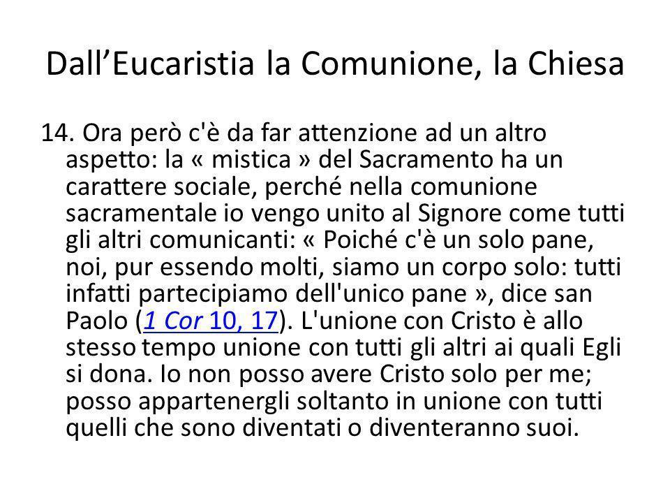 Dall'Eucaristia la Comunione, la Chiesa