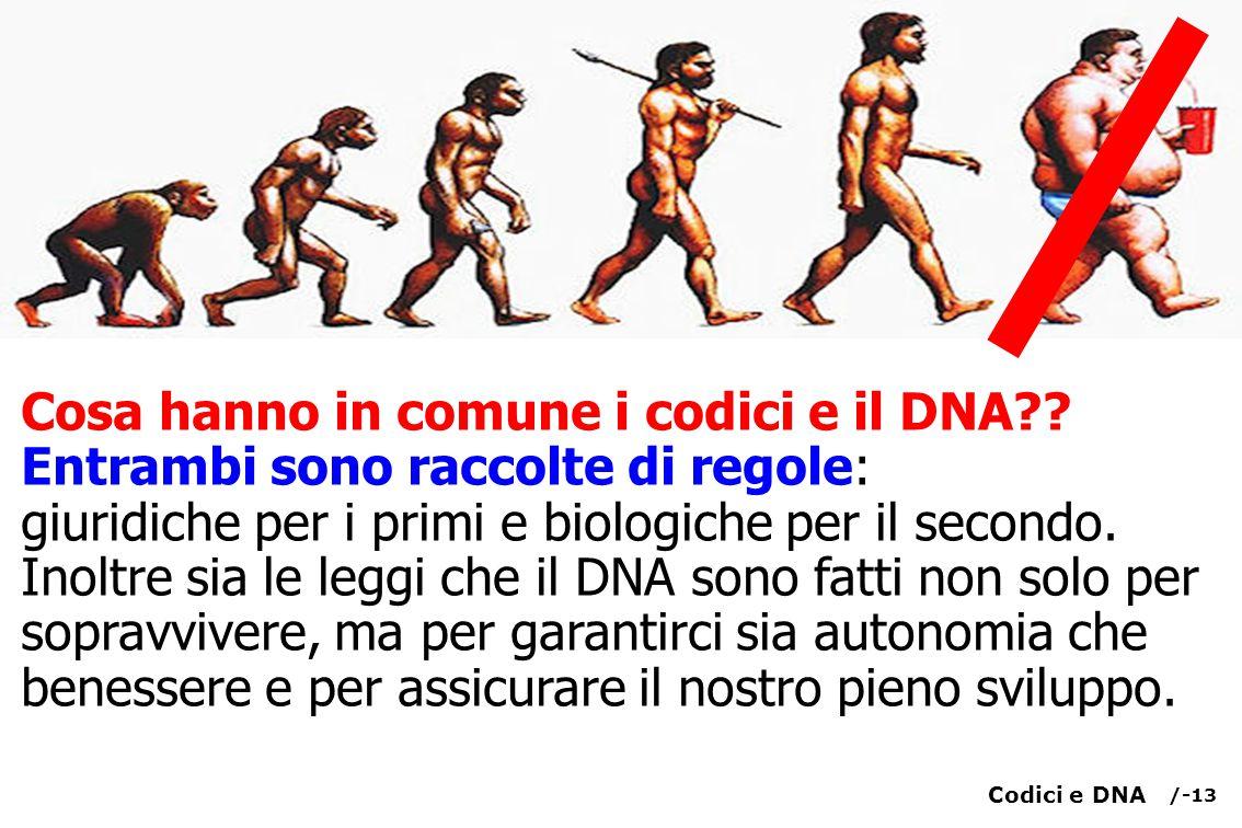 Cosa hanno in comune i codici e il DNA