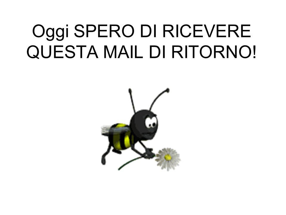 Oggi SPERO DI RICEVERE QUESTA MAIL DI RITORNO!