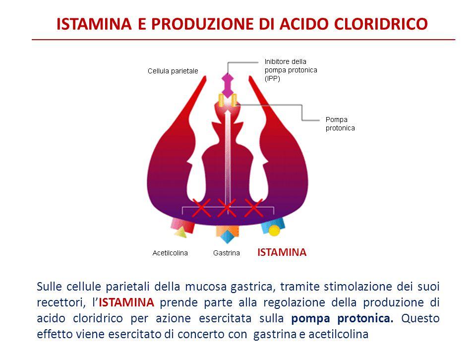 ISTAMINA E PRODUZIONE DI ACIDO CLORIDRICO