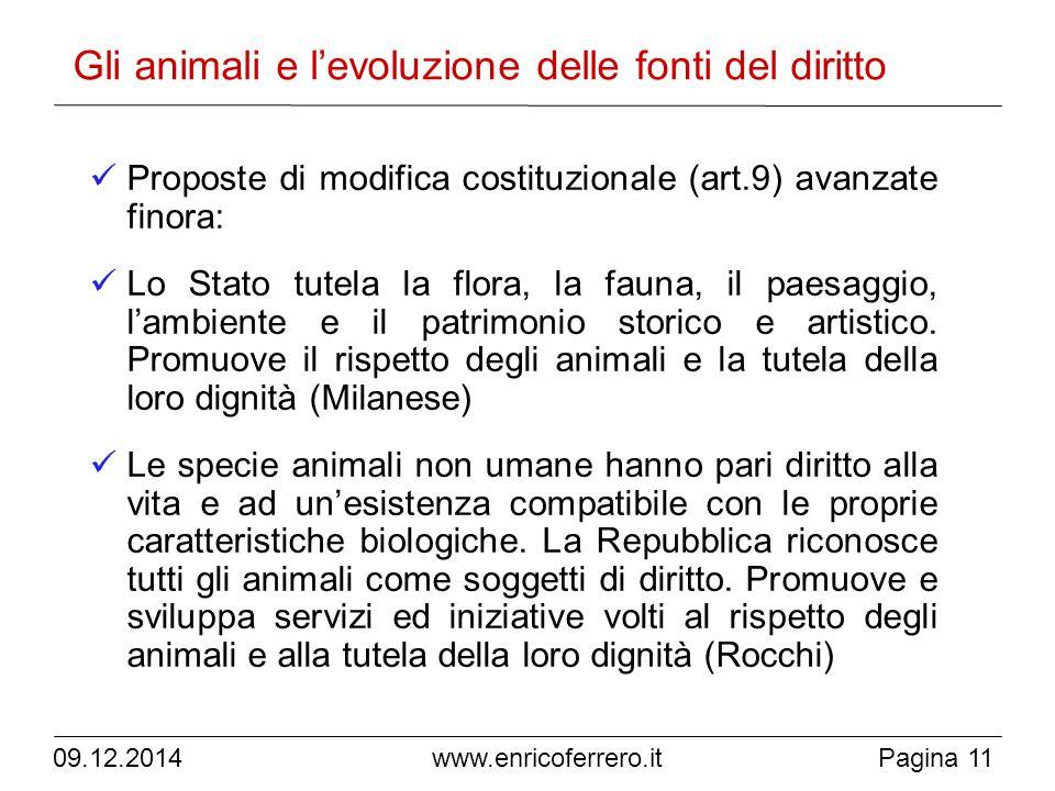Gli animali e l'evoluzione delle fonti del diritto