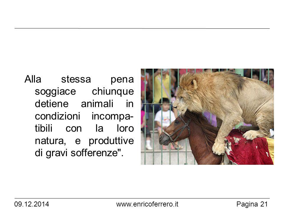 Alla stessa pena soggiace chiunque detiene animali in condizioni incompa- tibili con la loro natura, e produttive di gravi sofferenze .