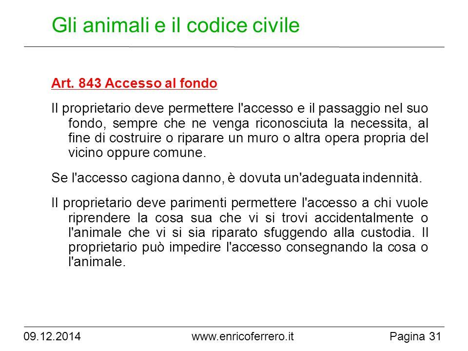 Gli animali e il codice civile