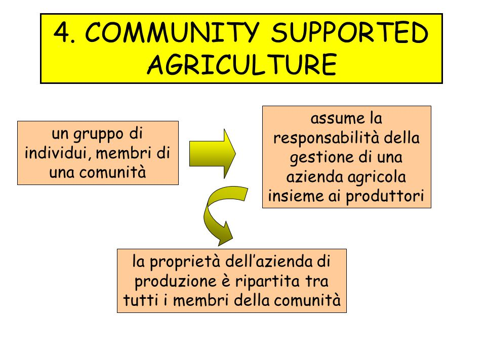4. COMMUNITY SUPPORTED AGRICULTURE