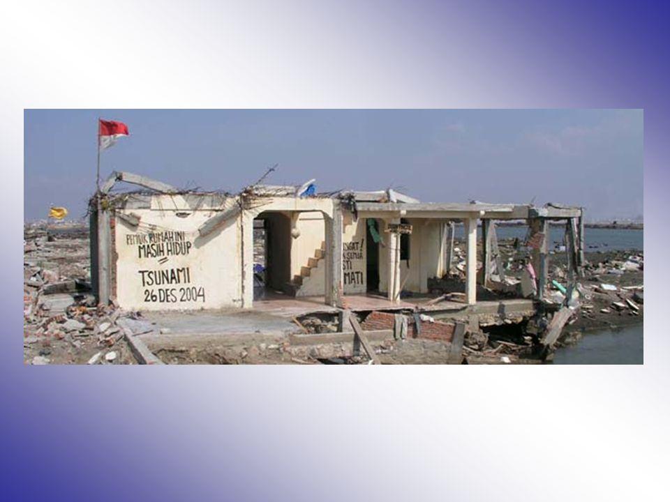 Tsunami e terremoto in Kashmir: