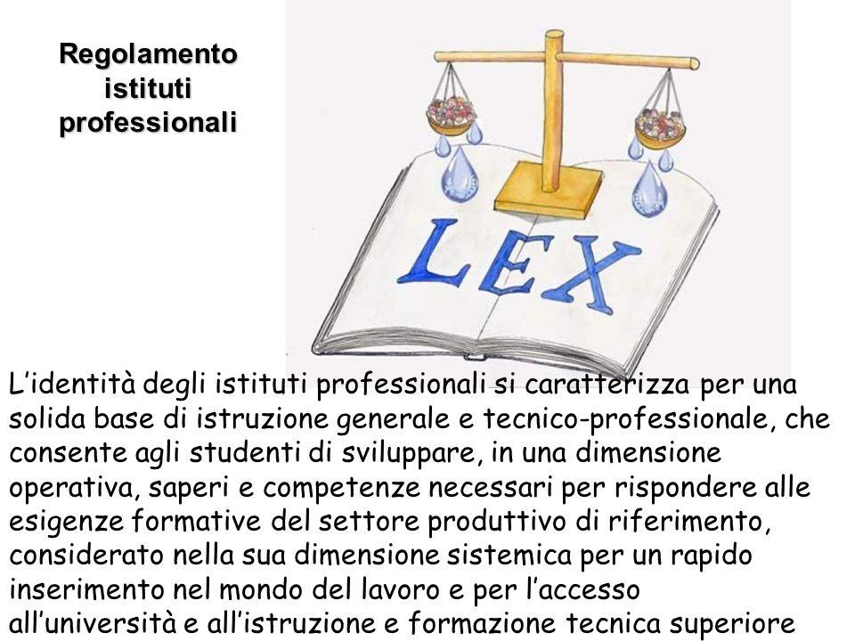 Regolamento istituti professionali
