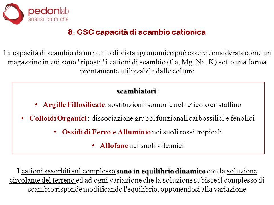 8. CSC capacità di scambio cationica