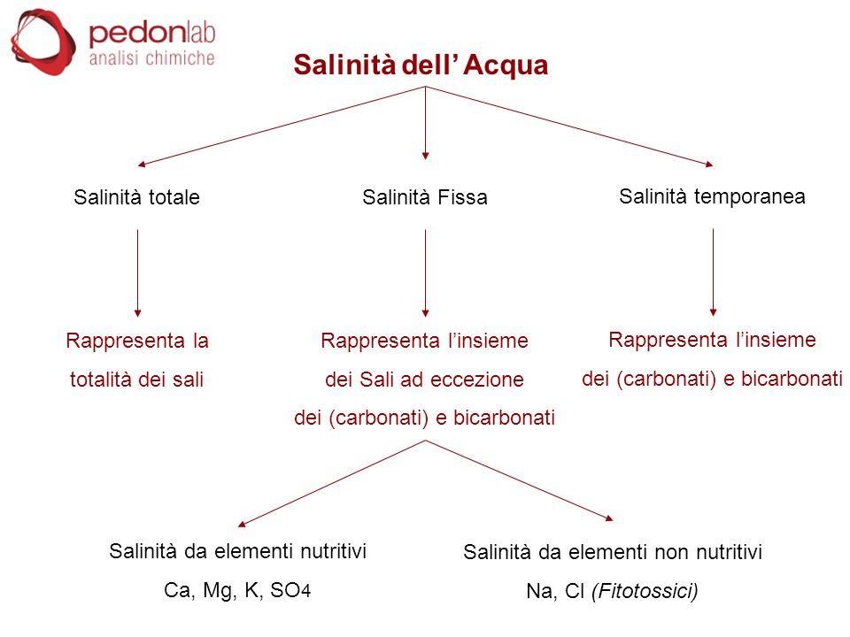 Salinità dell' Acqua Salinità totale Rappresenta la totalità dei sali