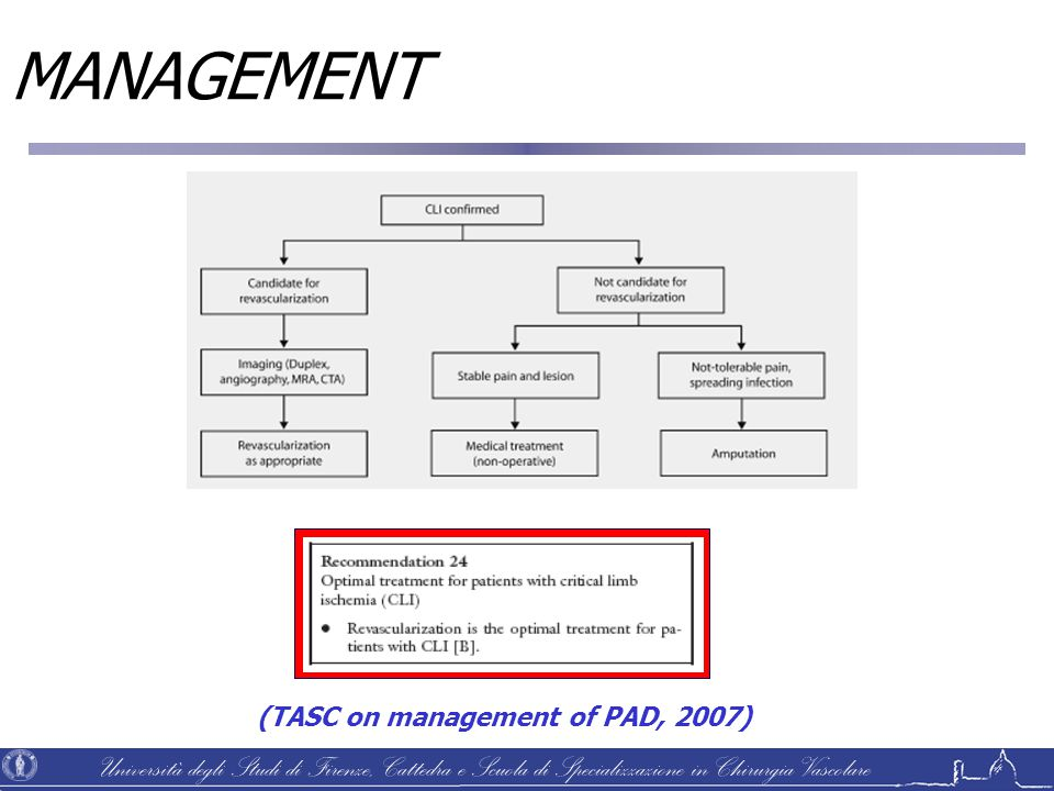MANAGEMENT (TASC on management of PAD, 2007)