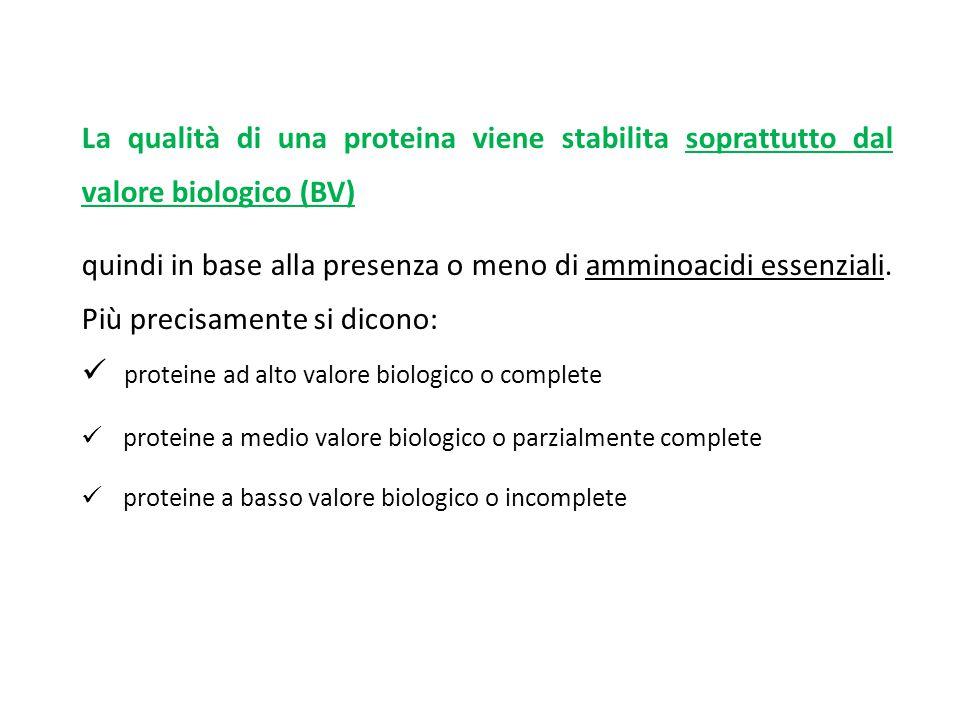 proteine ad alto valore biologico o complete