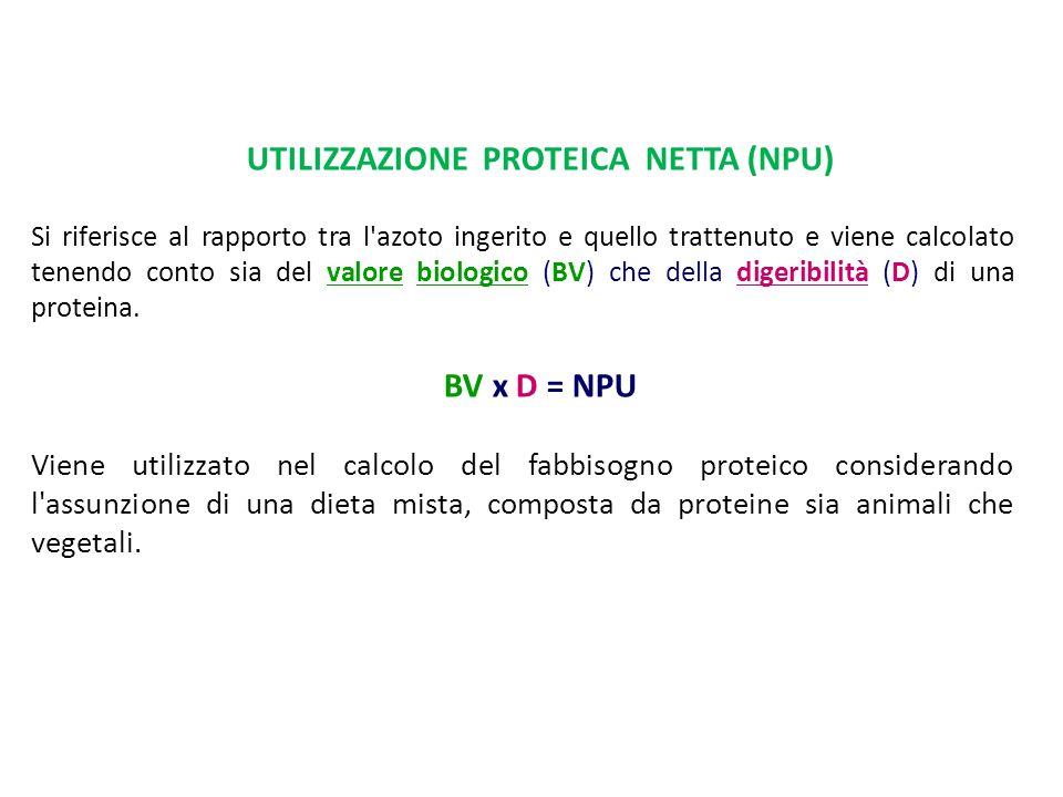 UTILIZZAZIONE PROTEICA NETTA (NPU)