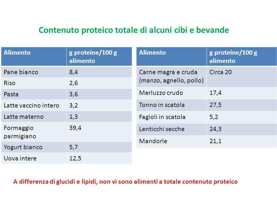 Contenuto proteico totale di alcuni cibi e bevande