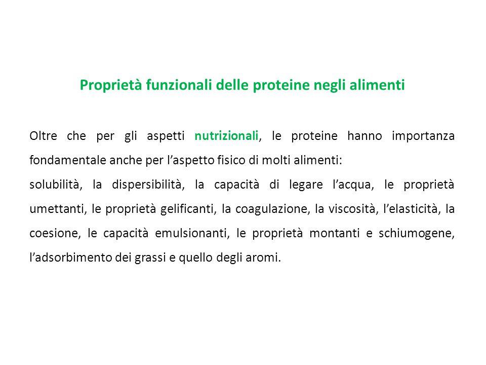 Proprietà funzionali delle proteine negli alimenti