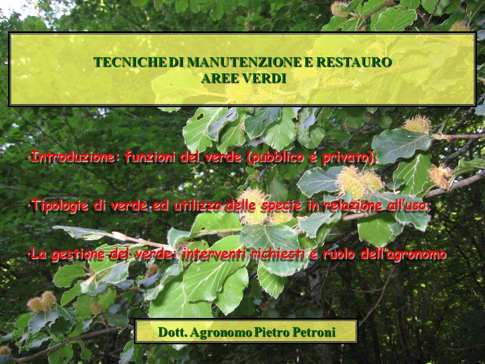 TECNICHE DI MANUTENZIONE E RESTAURO Dott. Agronomo Pietro Petroni