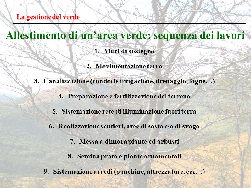 Allestimento di un'area verde: sequenza dei lavori