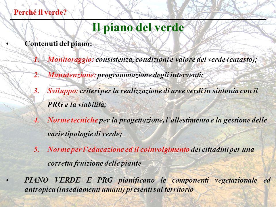 Il piano del verde Perché il verde Contenuti del piano:
