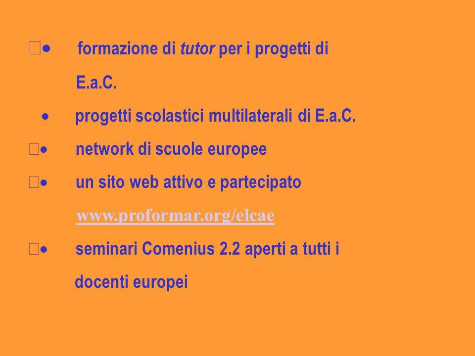 · formazione di tutor per i progetti di