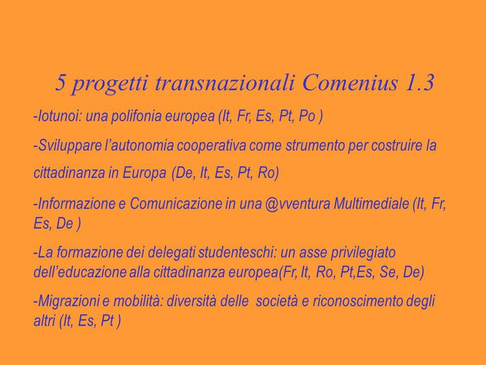 5 progetti transnazionali Comenius 1.3