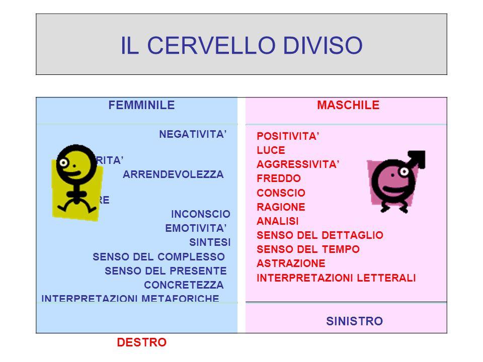 IL CERVELLO DIVISO FEMMINILE MASCHILE NEGATIVITA' POSITIVITA'