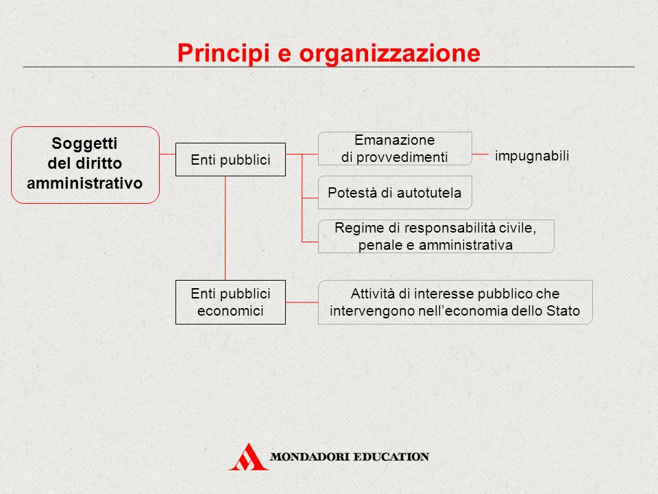 Principi e organizzazione del diritto amministrativo
