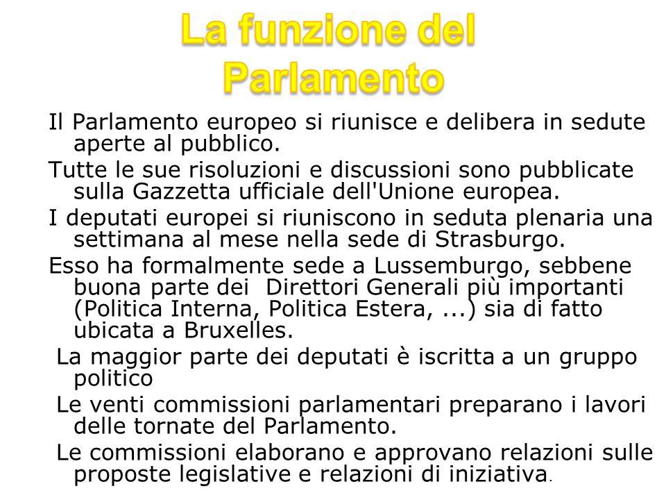 La funzione del Parlamento