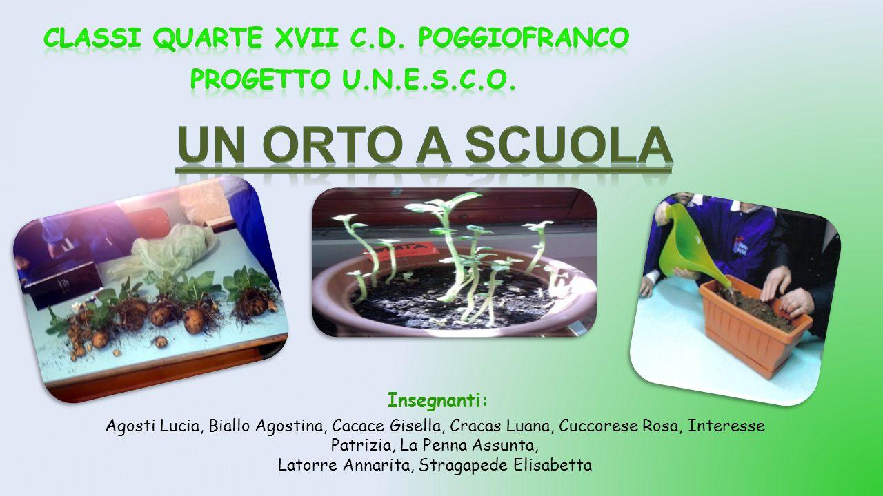 UN ORTO A SCUOLA Classi quarte XVII C.D. Poggiofranco