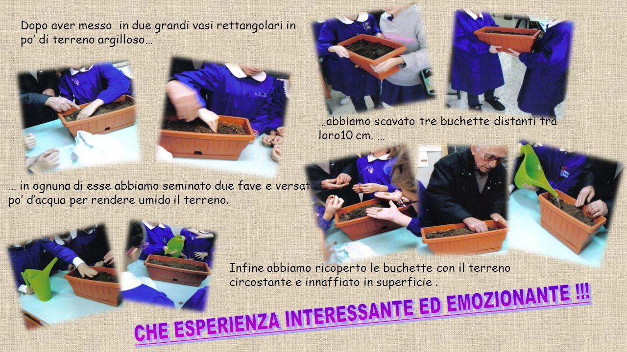CHE ESPERIENZA INTERESSANTE ED EMOZIONANTE !!!