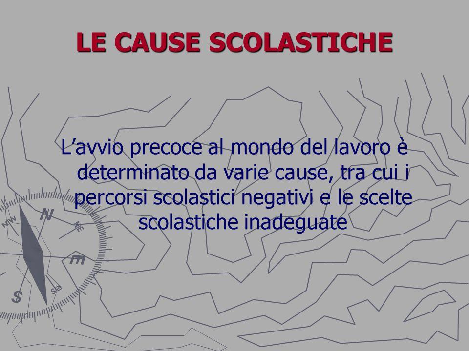 LE CAUSE SCOLASTICHE