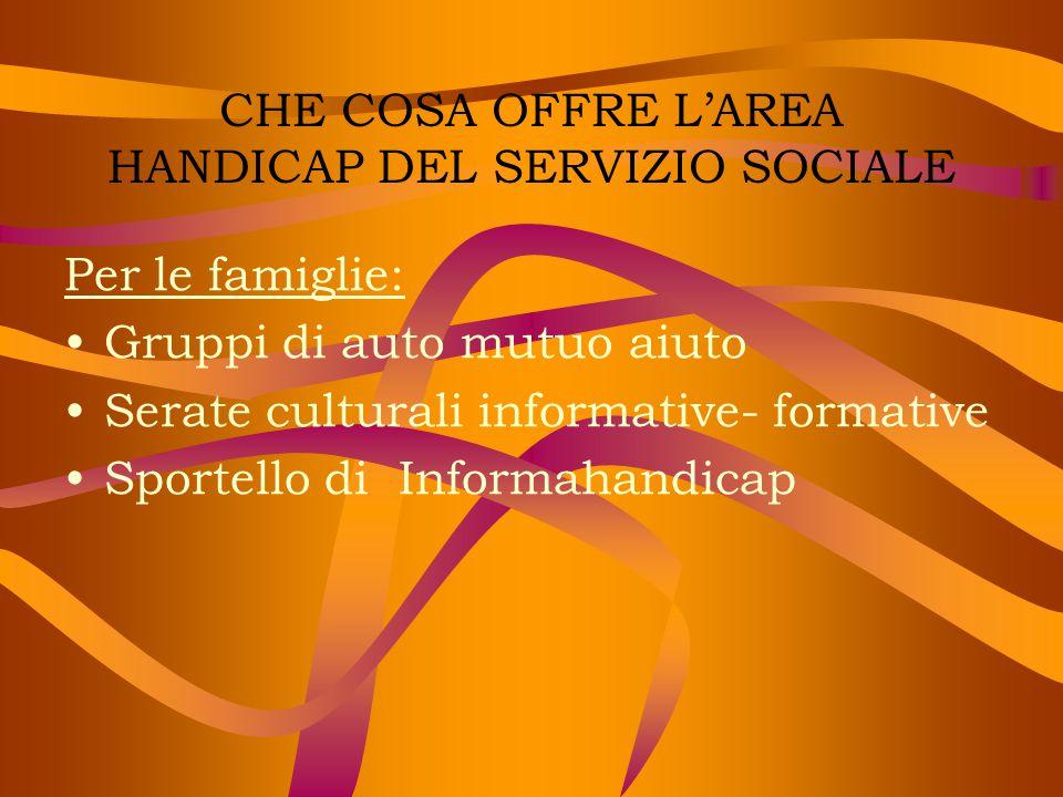 CHE COSA OFFRE L'AREA HANDICAP DEL SERVIZIO SOCIALE