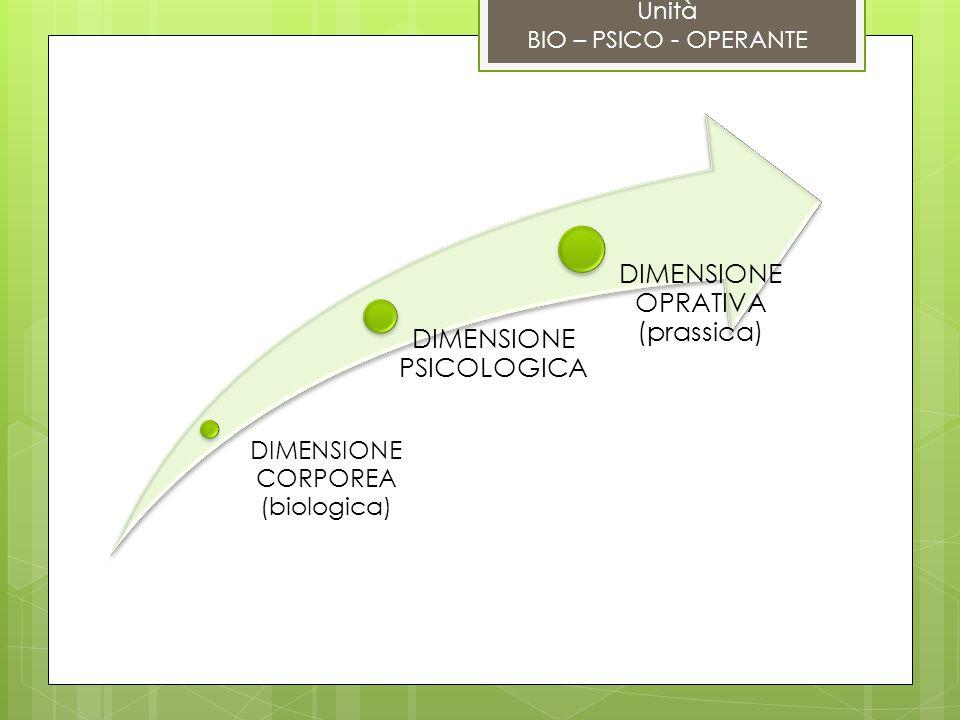 DIMENSIONE OPRATIVA (prassica)