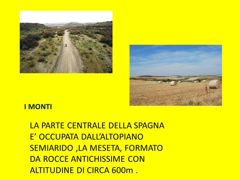 I MONTI LA PARTE CENTRALE DELLA SPAGNA E' OCCUPATA DALL'ALTOPIANO SEMIARIDO ,LA MESETA, FORMATO DA ROCCE ANTICHISSIME CON ALTITUDINE DI CIRCA 600m .