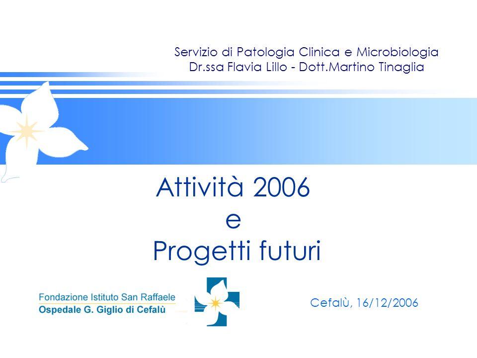 Attività 2006 e Progetti futuri