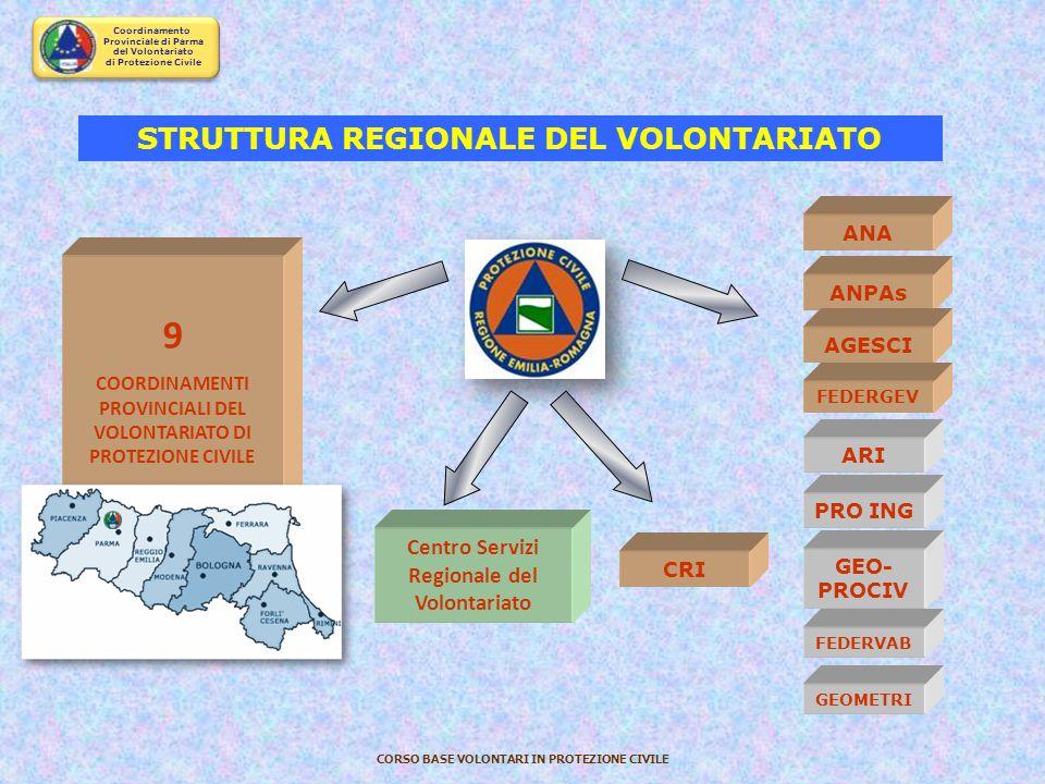 9 STRUTTURA REGIONALE DEL VOLONTARIATO Centro Servizi Regionale del