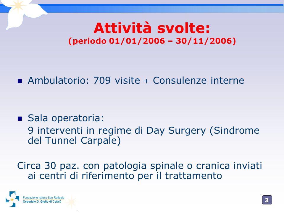 Attività svolte: (periodo 01/01/2006 – 30/11/2006)