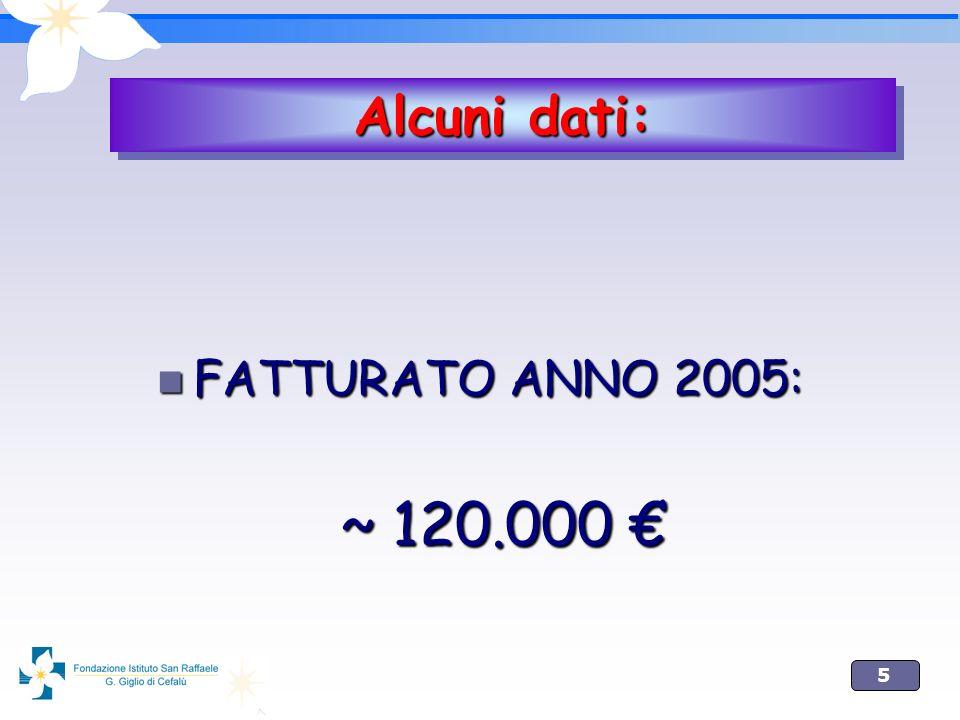 Alcuni dati: FATTURATO ANNO 2005: ~ 120.000 €