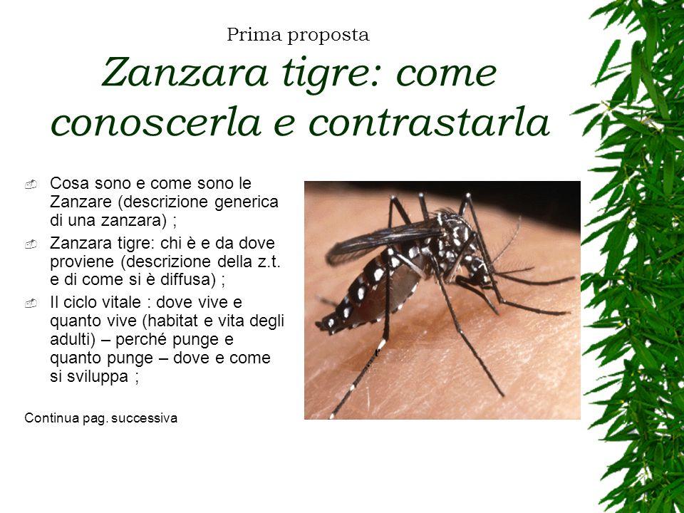 Prima proposta Zanzara tigre: come conoscerla e contrastarla