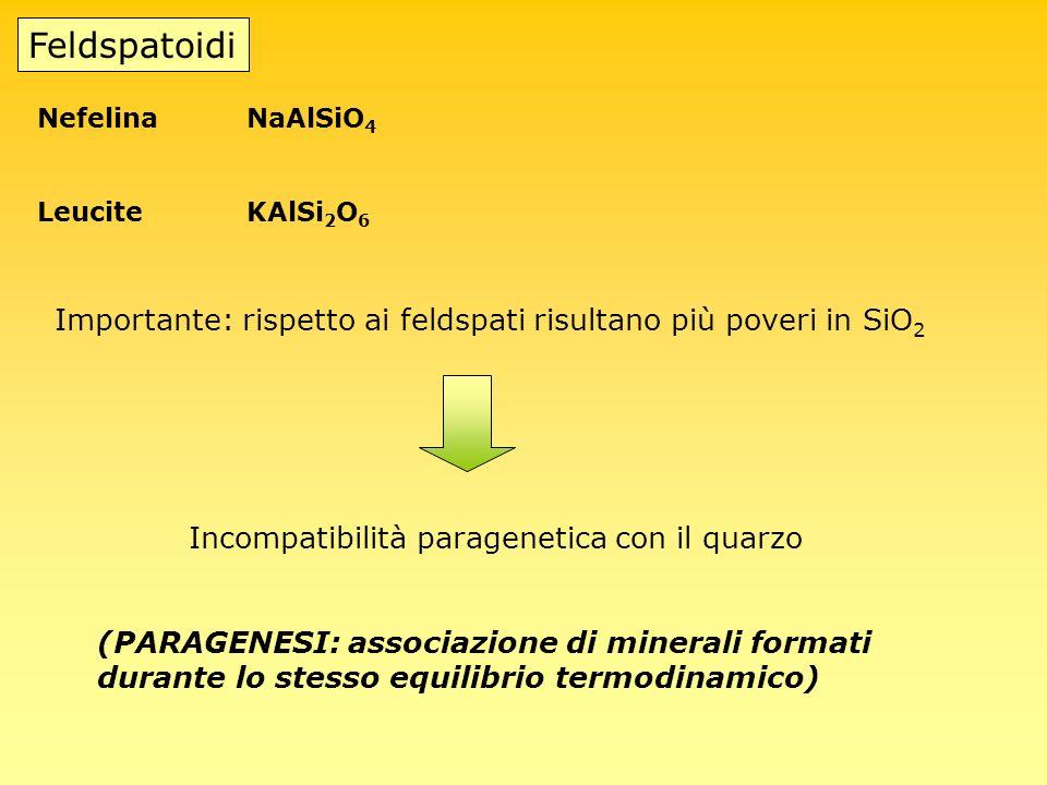 Feldspatoidi Nefelina NaAlSiO4. Leucite KAlSi2O6. Importante: rispetto ai feldspati risultano più poveri in SiO2.