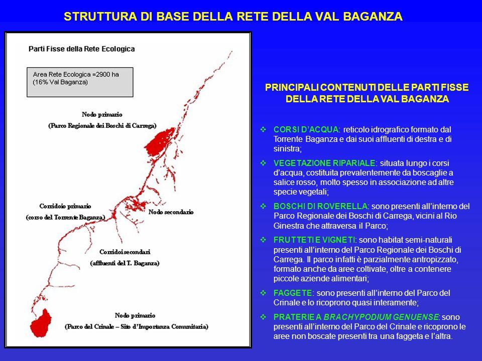 STRUTTURA DI BASE DELLA RETE DELLA VAL BAGANZA