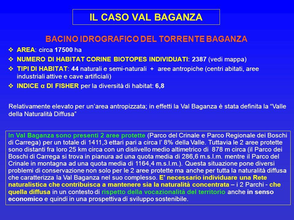 BACINO IDROGRAFICO DEL TORRENTE BAGANZA