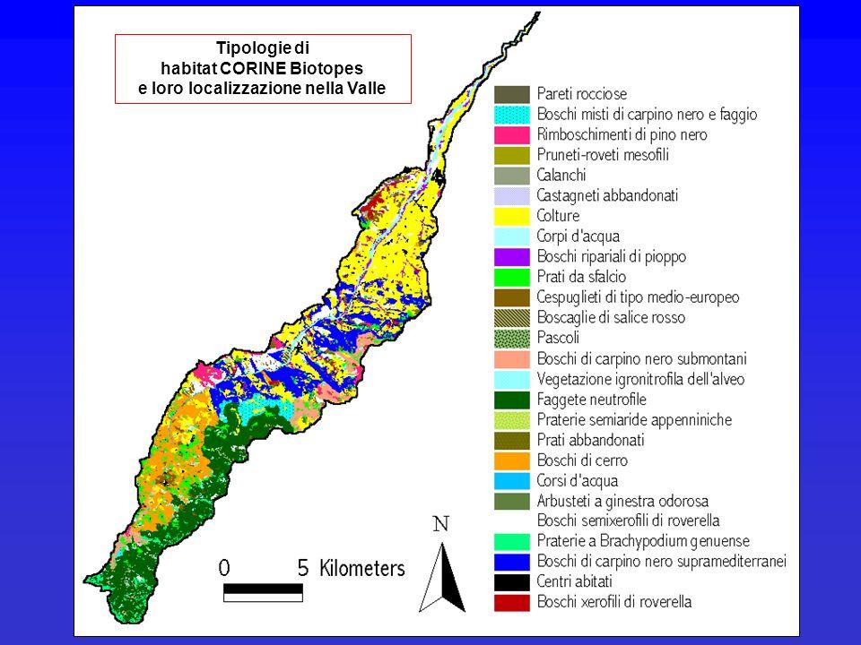 habitat CORINE Biotopes e loro localizzazione nella Valle